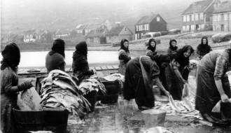 Vaska fisk á Garðabrúgv
