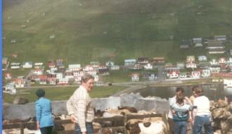 Á rættini í Hamrahagi í 1982