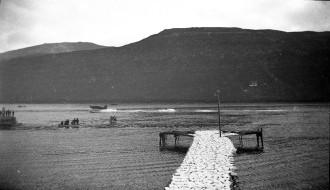 Vatnflogfar í Vági í 1931