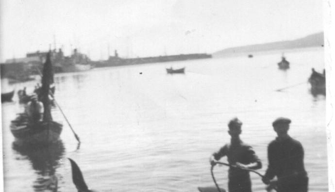 Grind í Havn