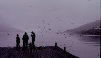 Teir fiska á Garðabrúgv