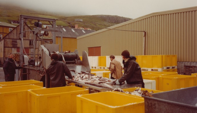 Fiskaarbeiði á keiini á Tvøroyri