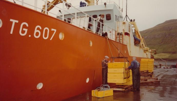 Polarborg II landar í Vági