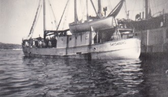 Saksaberg TG 804